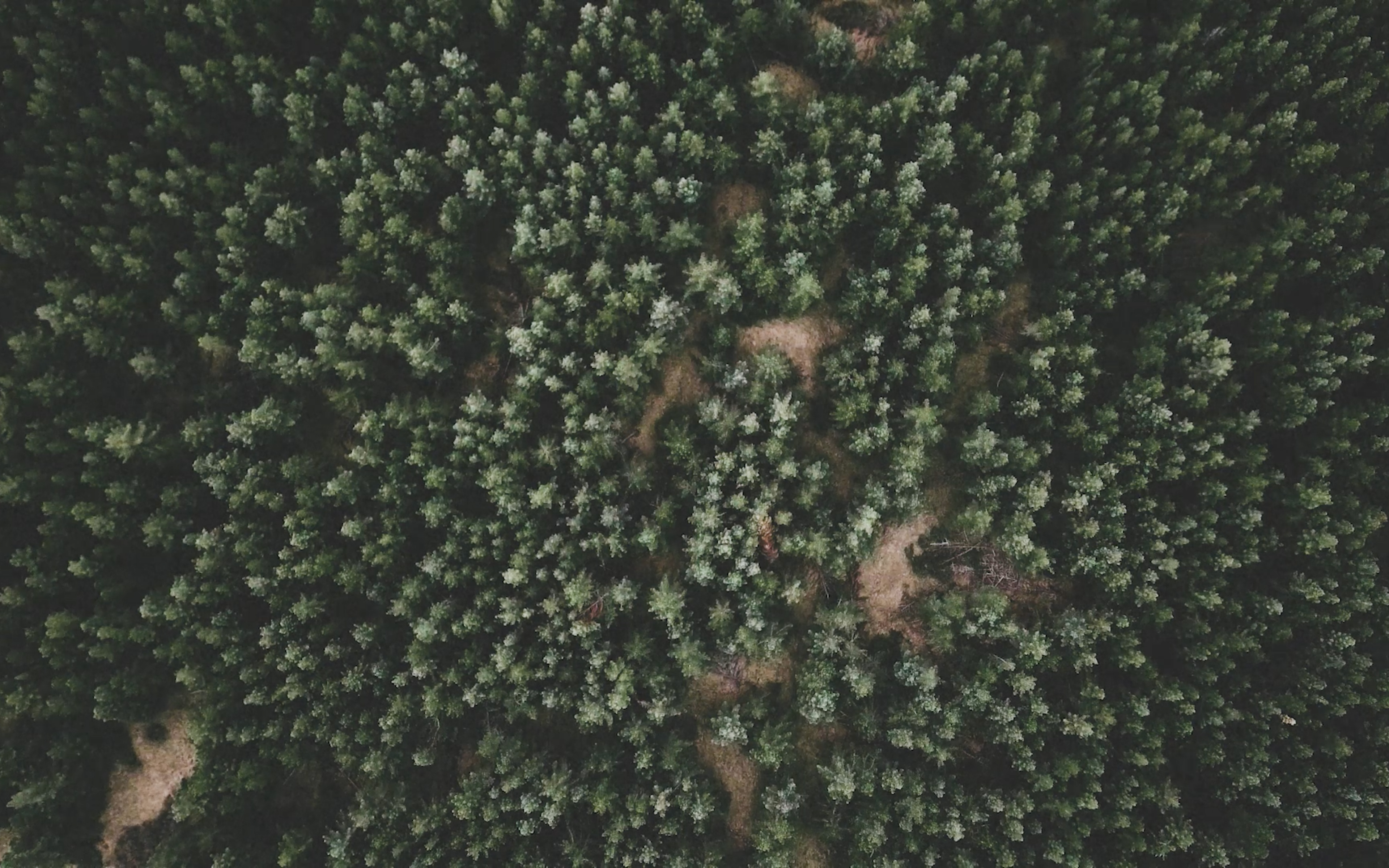 landing page video frame